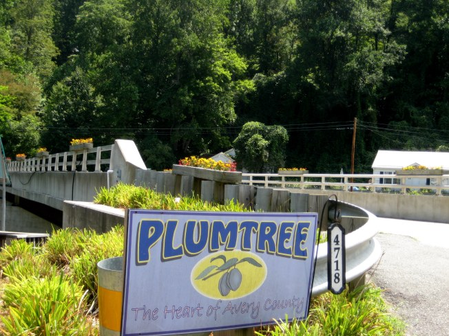 Plumtree, NC along Rt 19